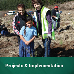 Projects & Implementation